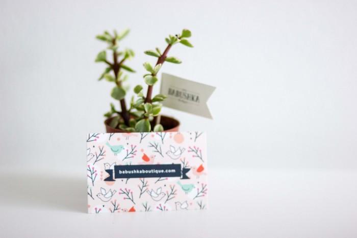 babushka cactus gift