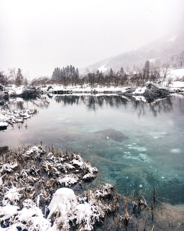 Cloudy Winter Day Such As Zelenci That Perfect Emerald Green Colour Charms Everyone Regardless Of The Weather And Is Taking Over Instagram